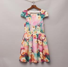 Slide Show Floral Dress
