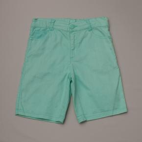 Spearmint Denim Shorts