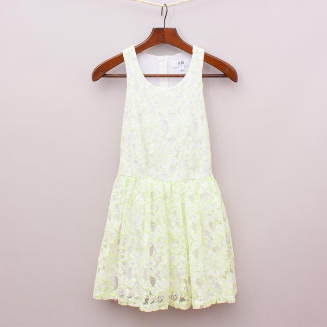 Seed Lace Dress