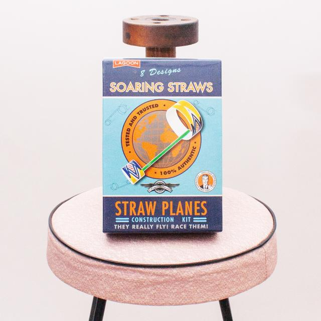 "Straw Planes Construction Kit ""Brand New"""