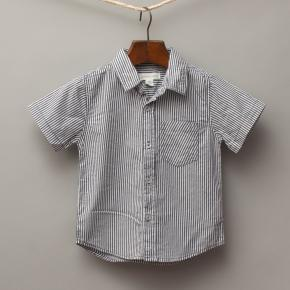 Pumpkin Patch Stripe Shirt